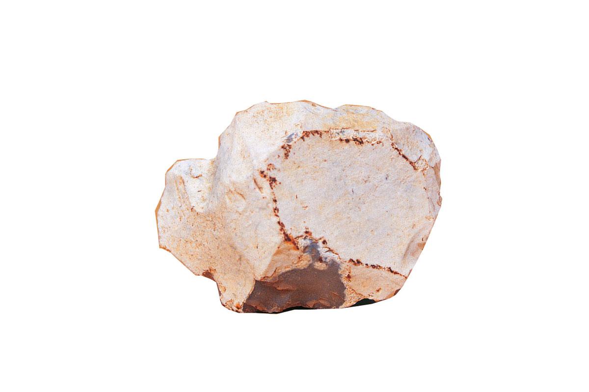 Bisonte T. R. 6,6 X 5