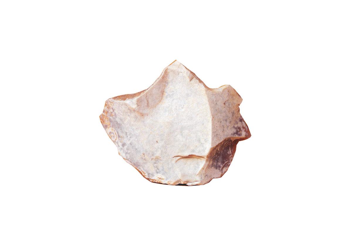Bisonte recostado T. R. 5,3 X 4,2