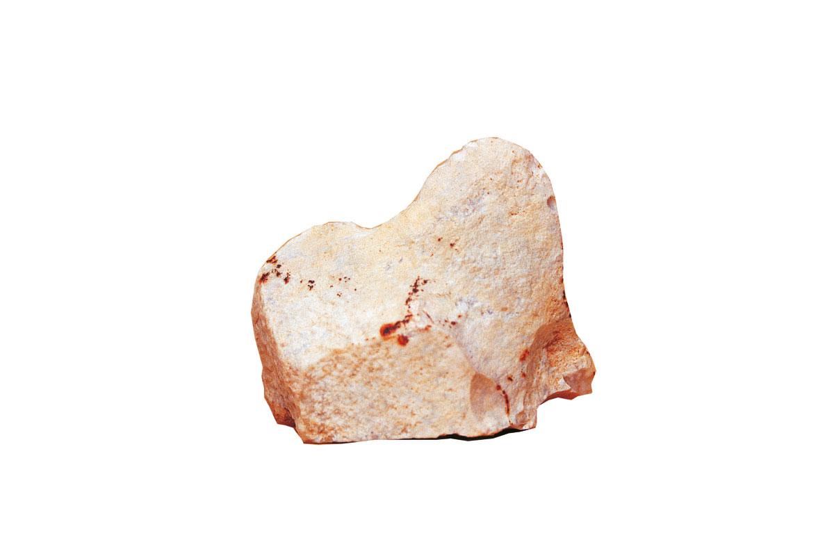 Mamut. T. R. 6,2 x 5,3